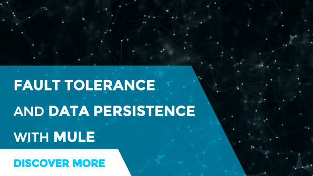 Fault tolerance, data reliability and Mule